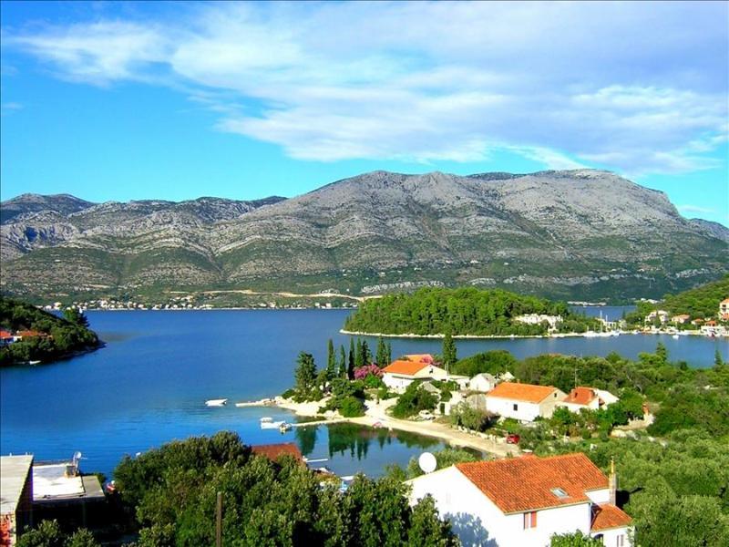 Tilia Apartment on Island Korčula offers an Authentic Dalmatian Experience - Image 1 - Zrnovo - rentals