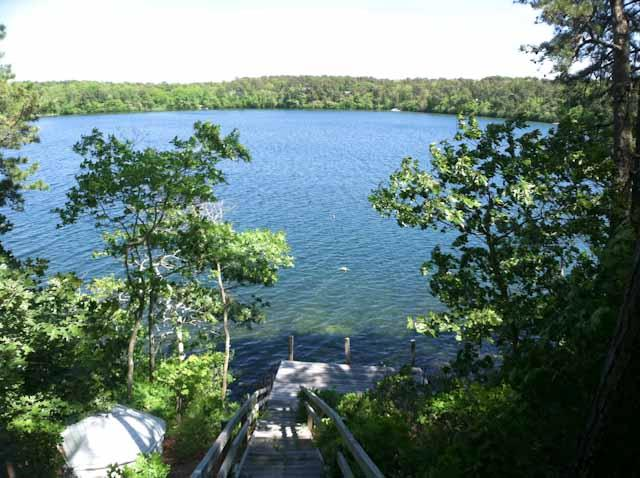 Stairway to dock - Directly on Sheep Pond with views & dock  -  BR0531 - Brewster - rentals