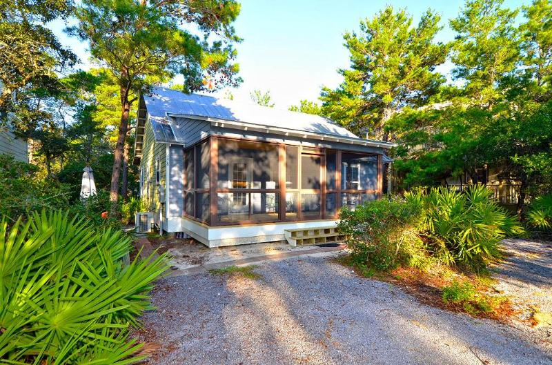 Palmetto Cottage - Image 1 - Seagrove Beach - rentals