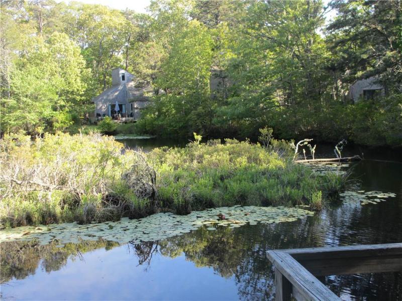 Contemporary cottage at Deck 2 - WDAVI - Image 1 - Wellfleet - rentals