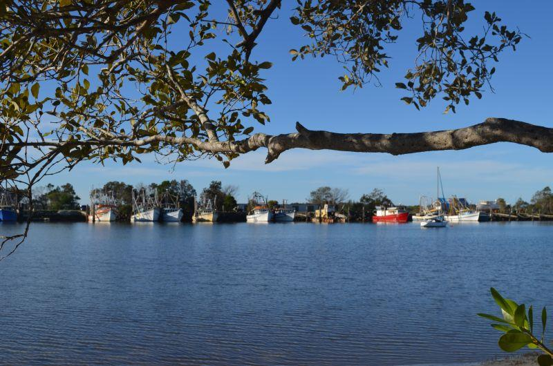 The River Cottage - Image 1 - Yamba - rentals