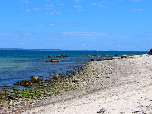 Chilmark  Waterview With Beach And Tennis! (213) - Image 1 - Massachusetts - rentals