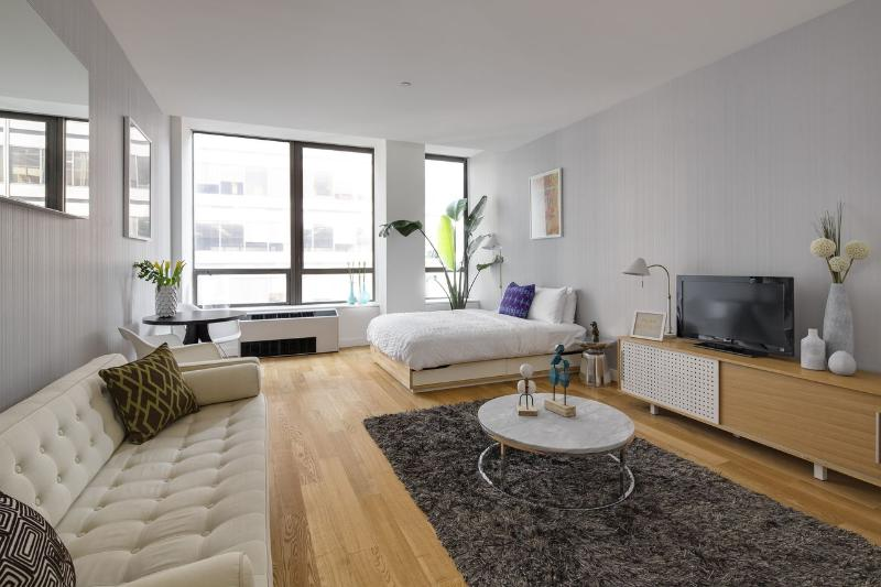 Living Room - Financial District Studio in Luxury Building - New York City - rentals
