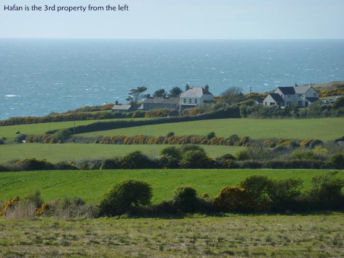 Pet Friendly Holiday Home - Hafan, Trefin - Image 1 - Trefin - rentals