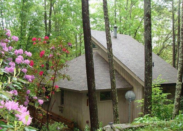 A Birds View a vacation in the trees awaits you in this 4 bedroom home. - Image 1 - Banner Elk - rentals