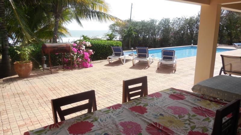 Pool view - MARBLUE Villa Suites/Pineapple  - 4 you ! - Treasure Beach - rentals