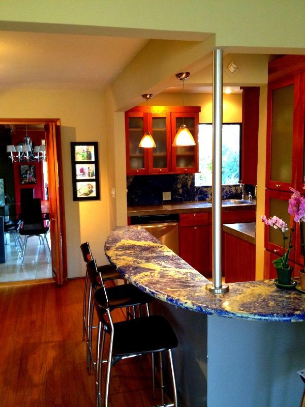 Casa Azul, Luxury Private Home in Pacific Beach! - Image 1 - Pacific Beach - rentals