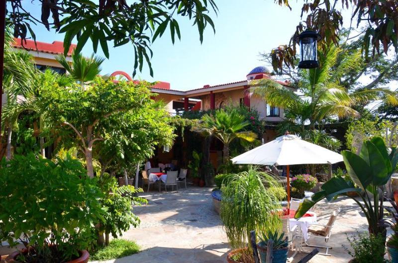 Garden Courtyard - Hacienda de Palmas - Hacienda de Palmas - B&B, Baja Sur, MEX - La Ribera - rentals