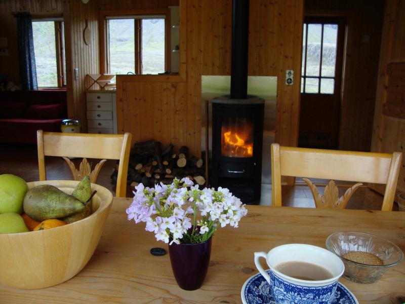 Cottage by the river in Brynjudalur - Image 1 - Skalafell - rentals