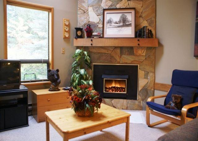 Fireplace in Living room - Cedar Hollow 9 - Quiet mountainside forest location - Whistler - rentals