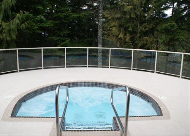 Painted Cliff 36 - Spacious ski in ski out property located on Blackcomb - Image 1 - Whistler - rentals