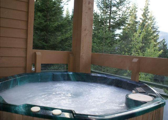 Northern Lights 2 - Spacious property in great location with private hot tub - Image 1 - Whistler - rentals