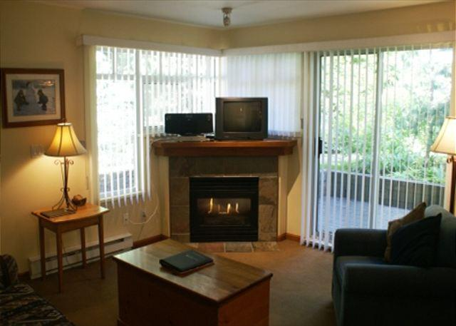 Fireplace - Stoney Creek Lagoons 5 - Conveniently located, free parking & wifi - Whistler - rentals