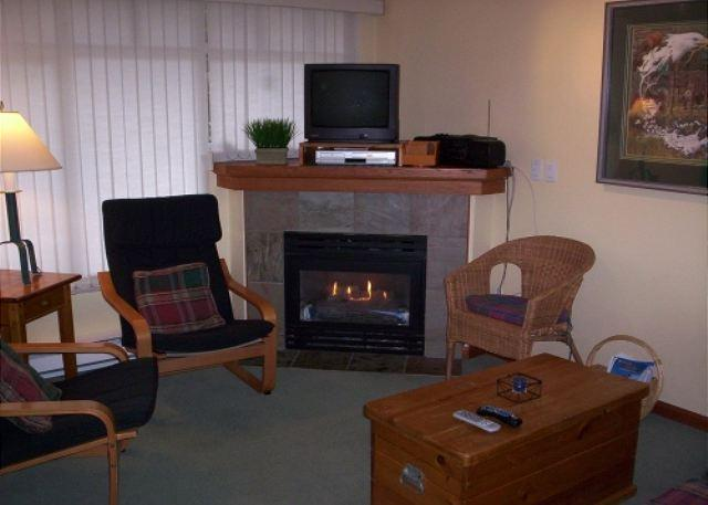 Living room - Stoney Creek Lagoons 41 - Conveniently located, free parking & wifi - Whistler - rentals