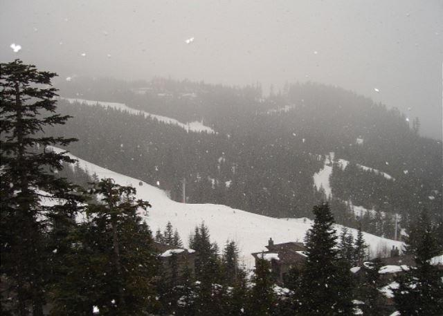 Taluswood The Bluffs 3 - Spacious Creekside location with amazing views - Image 1 - Whistler - rentals