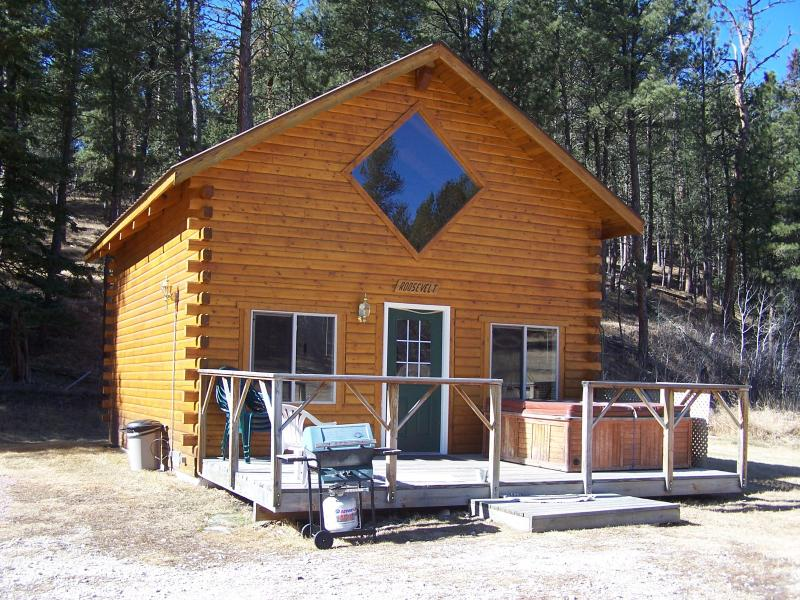 Roosevelt Cabin - Log Cabin with Hot Tub - Hill City - rentals