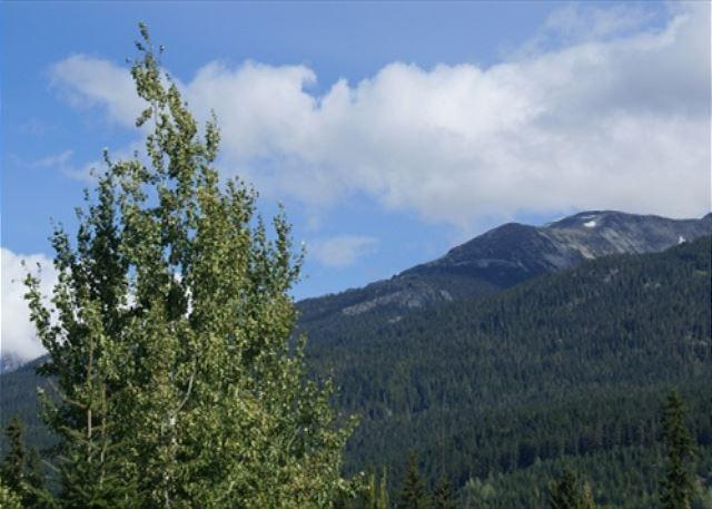 Glaciers Reach 44 - condo on the free shuttle route and includes free wifi! - Image 1 - Whistler - rentals