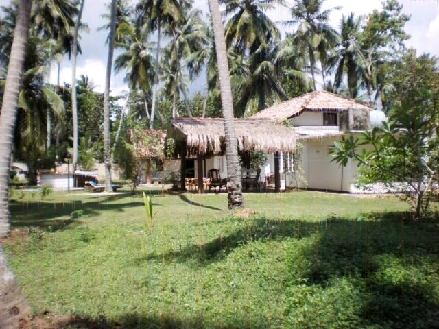 Exterior - Beach Front - Amazing Bungalow in Tangalle - Tangalle - rentals