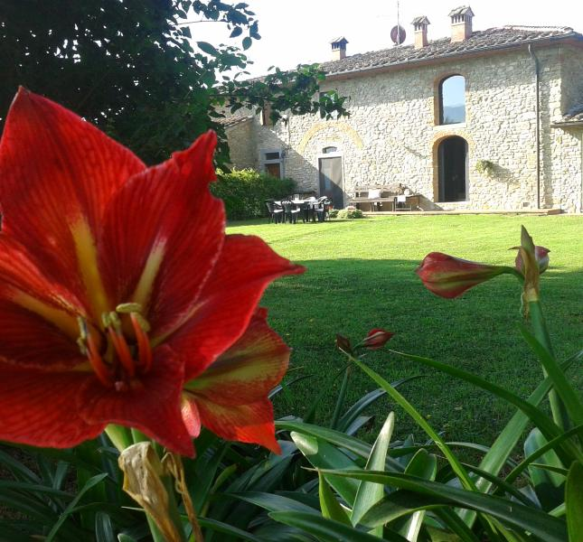 Paoli delle Logge - nice cottage Florence countryside - Vicchio - rentals