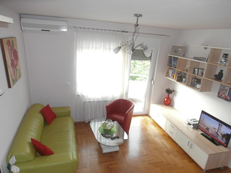 living room - Apartment DENA - all you need - Zagreb - rentals