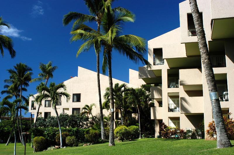 Kamaole Sands 1 Bedroom 10302 - Kamaole Sands 1 Bedroom 10302 - Kihei - rentals