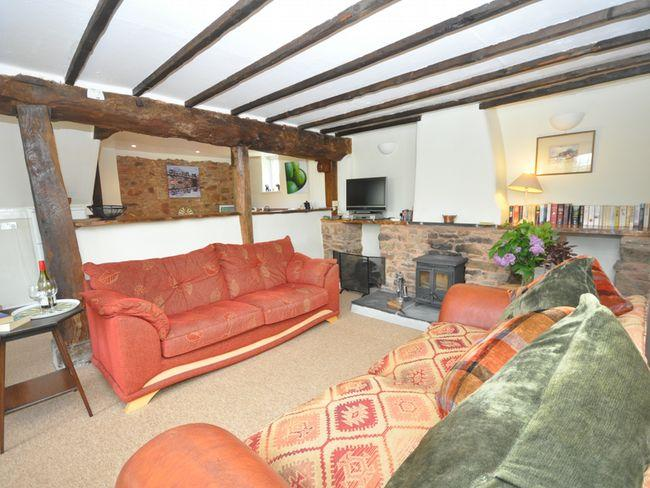 Lounge with woodburner - WAROU - Devon - rentals