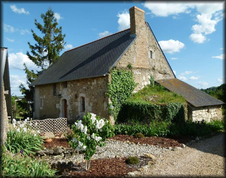 Outside of property - Beautiful 15th century rural cottage, fully restored in a very peaceful location between Angers & Saumur - Sermaise - rentals