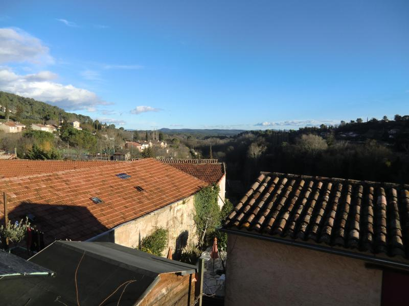 View from the living-room - Charming apartment in Provence - Cotignac - rentals