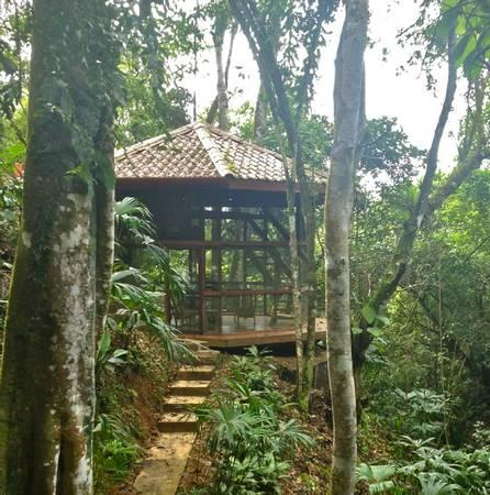 Waterfall Villa - Waterfall Villa with Private Waterfall & Pool - Dominical - rentals