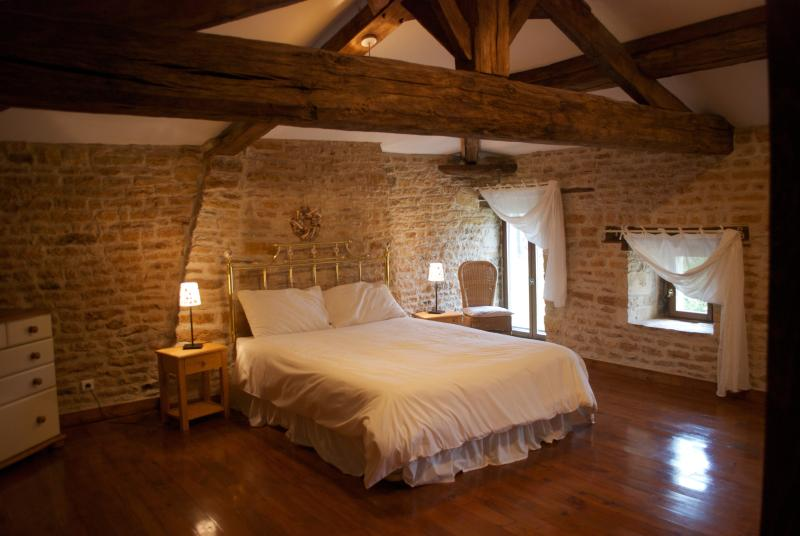 Master Kingsize bedroom with Jack and Jill bathroom - Old Farmhouse - Sauze-Vaussais - rentals