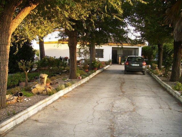 Peaceful Rural Haven - Peaceful Rural Haven - Sanlucar la Mayor - rentals
