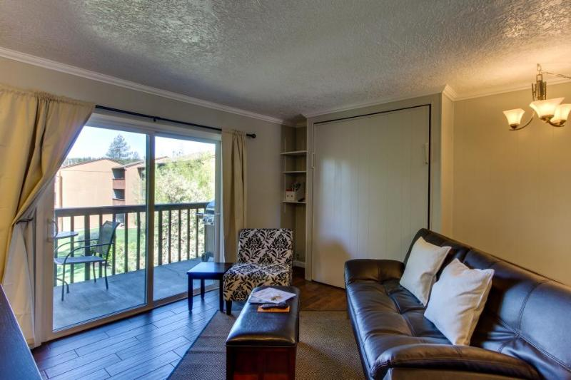 Dog-friendly studio w/access to shared pool, hot tub! Walk to the park, downtown - Image 1 - Bend - rentals