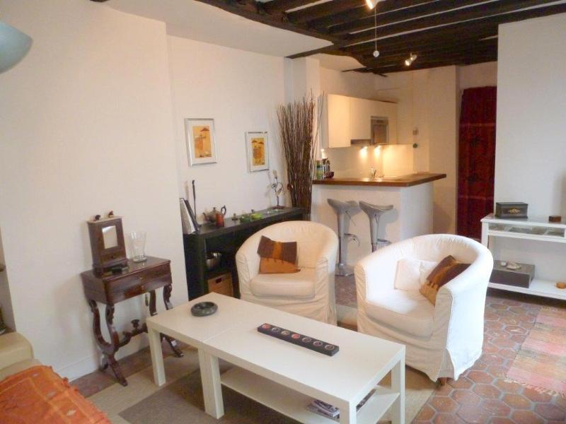 Living room - Cosy One Bedroom Mazarine St Germain des Pres - Paris - rentals