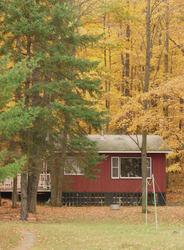 Cabin View from the Lake - Crescent Country Cabin - Rhinelander - rentals