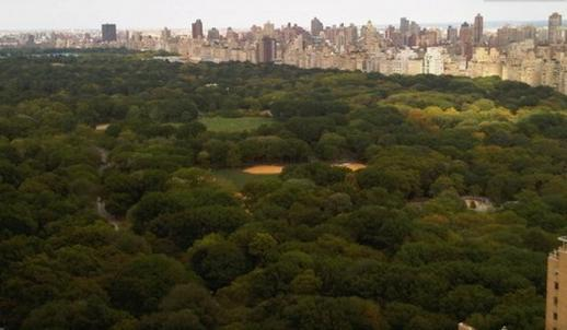 NEXT TO CENTRAL PARK - CENTRAL PARK ADJACENT LUXURY CITY VIEWS SLEEPS 1-4 - West New York - rentals