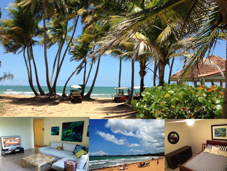 Beach club, apartment living room etc - Near Rio Mar hotel, Rio Grande Puerto Rico - Rio Grande - rentals