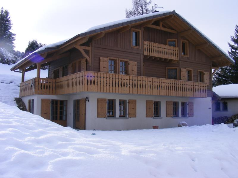 The apartment on the ground floor - Chalet Morets - Saint Gervais les Bains - rentals