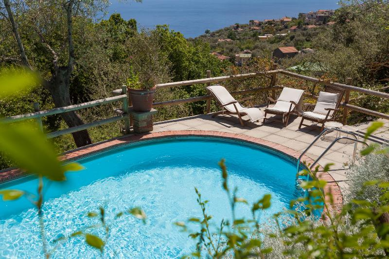 Shared smimming pool in garden - Antico Casale Ruoppo (Vigneto) Sorrento Coast - Sant'Agata sui Due Golfi - rentals
