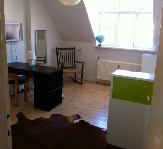 Nansensgade Apartment - Copenhagen apartment near the lakes and Stroeget street - Copenhagen - rentals