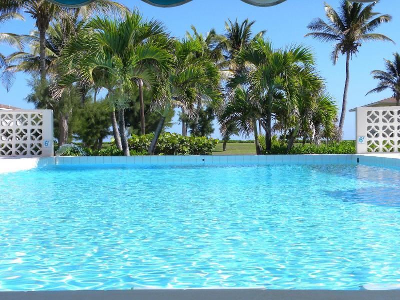 Communal Pool - Paradise 1 bed Condo - Basseterre - rentals