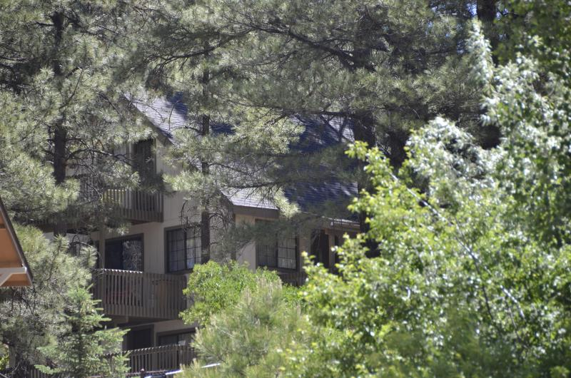 Amongst The Pines - Perfect Family Getaway - Ponderosa Pines Flagstaff - Flagstaff - rentals
