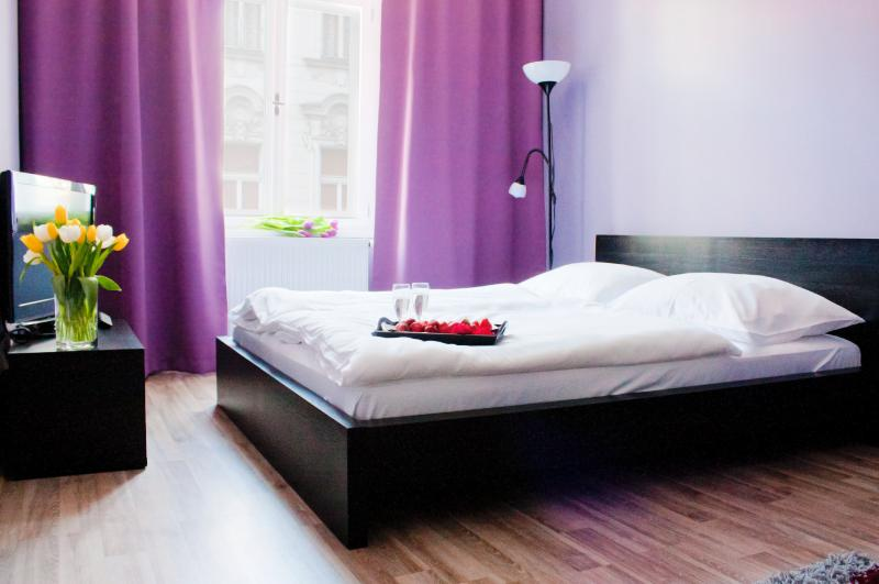 STUDIO APARTMENT IN PRAGUE CENTER - Image 1 - Prague - rentals