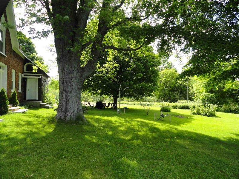 Garden with BBQ, picnic table and lounge chairs - 2 bedroom house 5 minutes to Sandbanks, sleeps 6 - Bloomfield - rentals