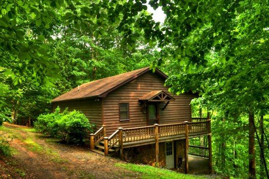 FRONT OF THE CABIN - A HEAVENLY VIEW- 15 MINUTES FROM BLUE RIDGE - Blue Ridge - rentals