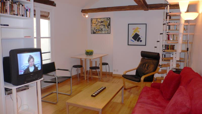 A nice living room where nothing is missing. - 369 Studio   Paris Saint Germain des Pres district - Paris - rentals