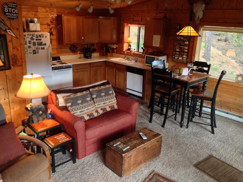 Cozy Living Room - Deer Creek Cabin - Bailey, Colorado - Bailey - rentals