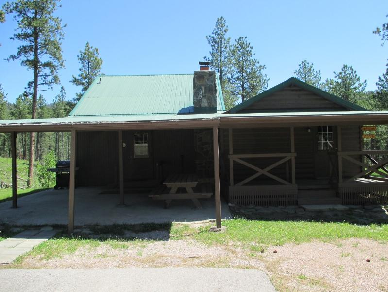 Harney View Cabin - Harney View Cabin - Hill City - rentals