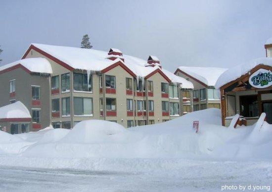 Sun Meadows Condo at Kirkwood Sleeps 9 ~ RA1483 - Image 1 - Kirkwood - rentals