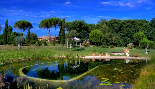 Bio pool and gardens - 2 bedroom villa near Siena - BFY13572 - Siena - rentals