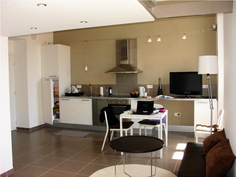 Superb Borniol Loft 1 Bedroom Flat in Cannes - Image 1 - Cannes - rentals